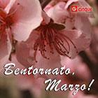 Benvenuto Marzo: linfa, germogli e nuovi progetti per noi di Gicinque!